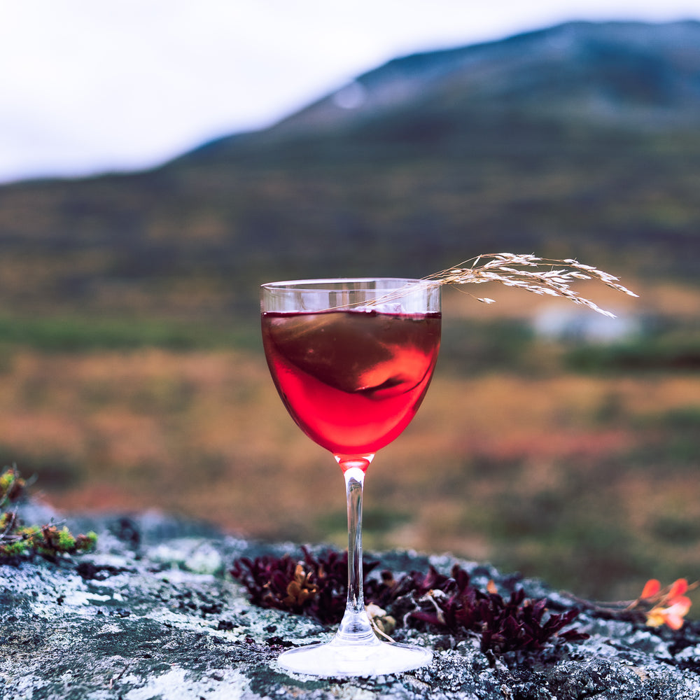 "Load image into Gallery viewer, Nordic Negroni Lingonberry & Bilberry ""Lingon & Blåbär"" (5875601965209)"