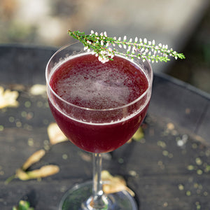 Load image into Gallery viewer, DIY Clementine & Elderberry Gimlet (5875825803417)