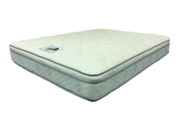 "SLEEP BEAUTY #2 9 1/2"" MATTRESS-Lifeisgoodfurniture"