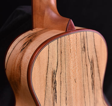Cordoba 24C Concert Uke Spalted Maple and Sitka Spruce