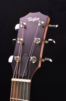 Taylor 210CE Plus Dreadnought Cutaway
