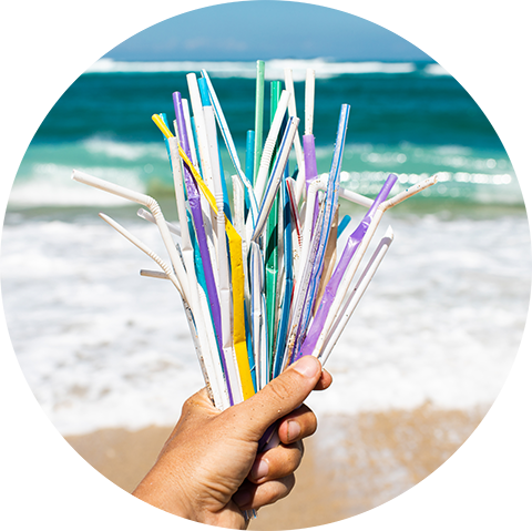 Plastic Straw trash at the beach cleanup choose to reuse save the oceans and turtles