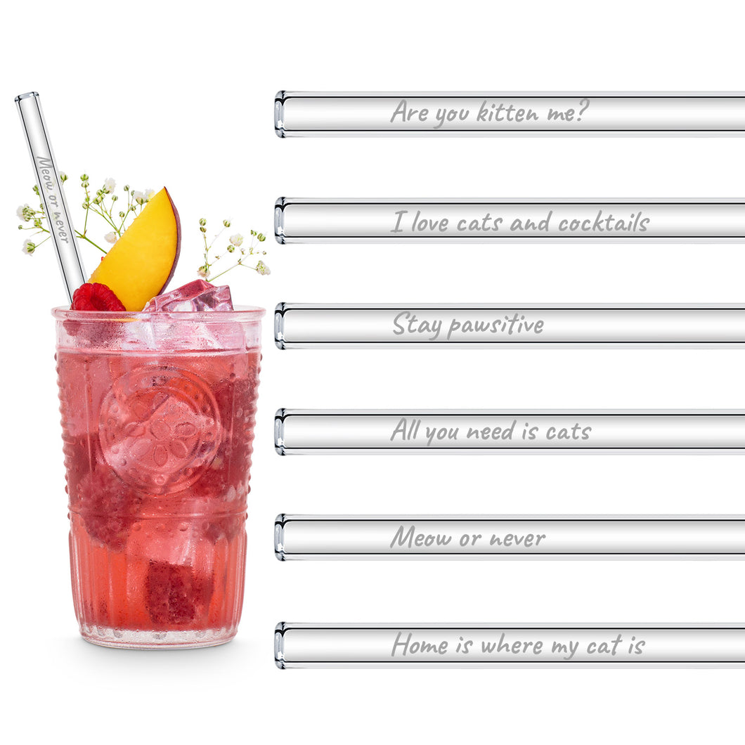 Cat Lover Glass Straws 8 inch Engraved with funny cat quotes - Set of 6
