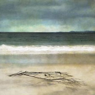 Driftwood on Camusdarach Beach, Arisaig Print