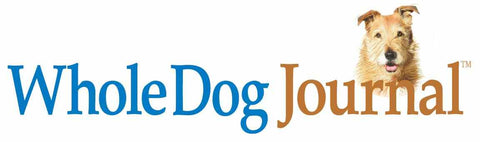 The Best Dog Harnesses: Ratings & Reviews from Whole Dog Journal