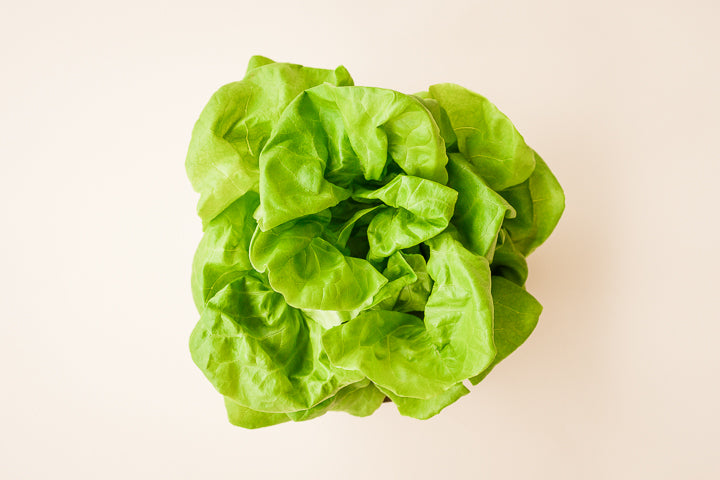 Crisp Farms Organic Living Lettuce