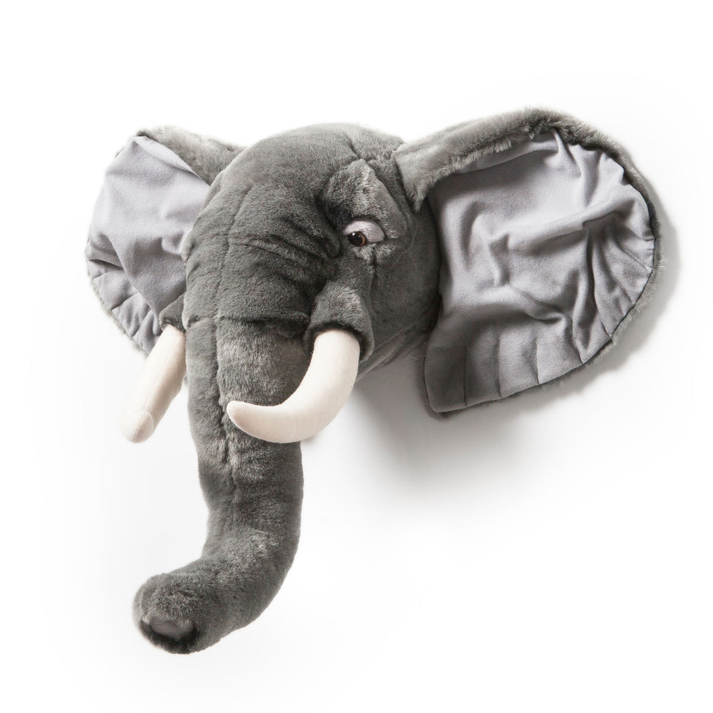 Paul the dark grey elephant
