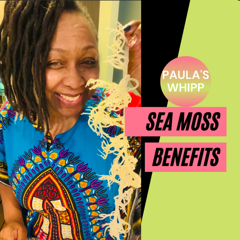 paula's Whipp Sea Moss for hair skin and body