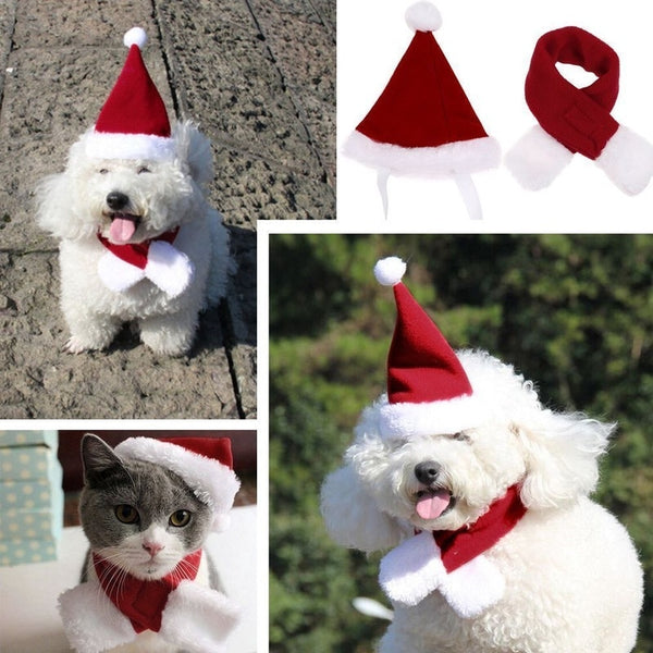 Pet Christmas Scarf And Hat