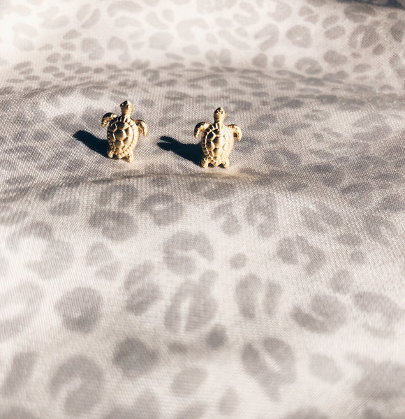LITTLE MISS TURTLE STUDS