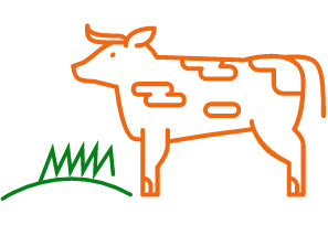 Grass-fed, finished Icon