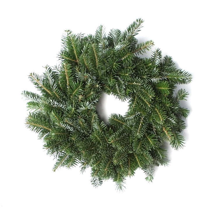 14 Inch Fresh Fraser Fir Christmas Wreath