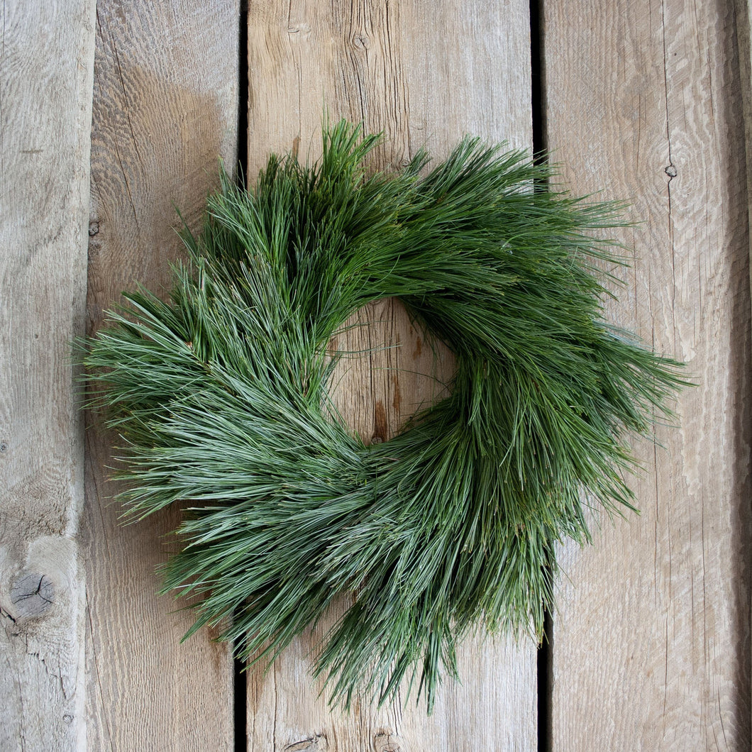 14 Inch White Pine Fresh Christmas Wreath