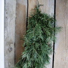 Load image into Gallery viewer, Fresh Concolor Fir Garland (24 Inch to 18 Feet)