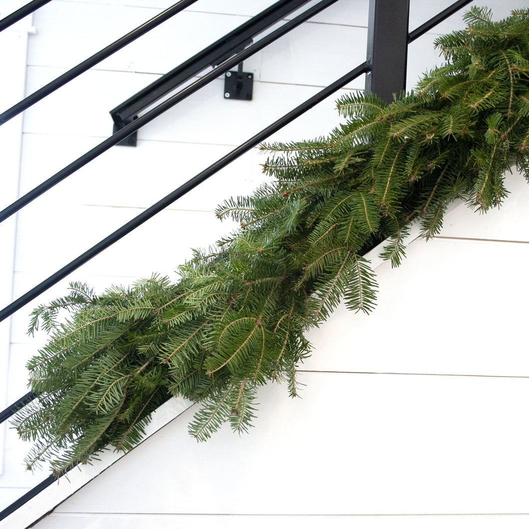 Fresh Fraser Fir Garland (24 Inch to 18 Feet)