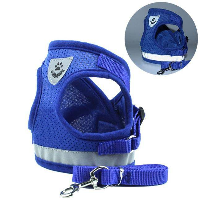 Dog Cat Harnesses Vest Reflective Safety and Leash Set - petazaustralia