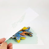 Butterflies Pop Up Card