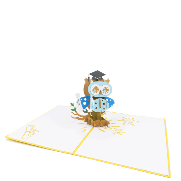 Graduation Owl-boy Pop Up Card