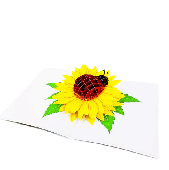 Ladybug Pop Up Card