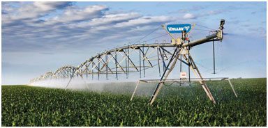 Broad Lateral Irrigation