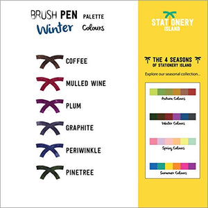 Brush Pens Pack Of 6 | Winter Colours