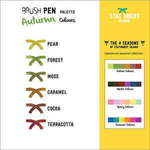 Brush Pens Pack Of 6 | Autumn Colours