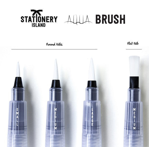 Aqua Brush Pack Of 4 | Mixed Nibs