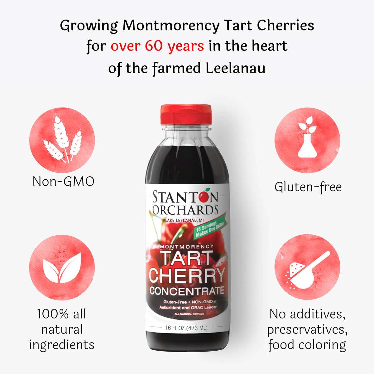 Case of Twelve (12) 16 oz. Bottles of Tart Cherry Concentrate