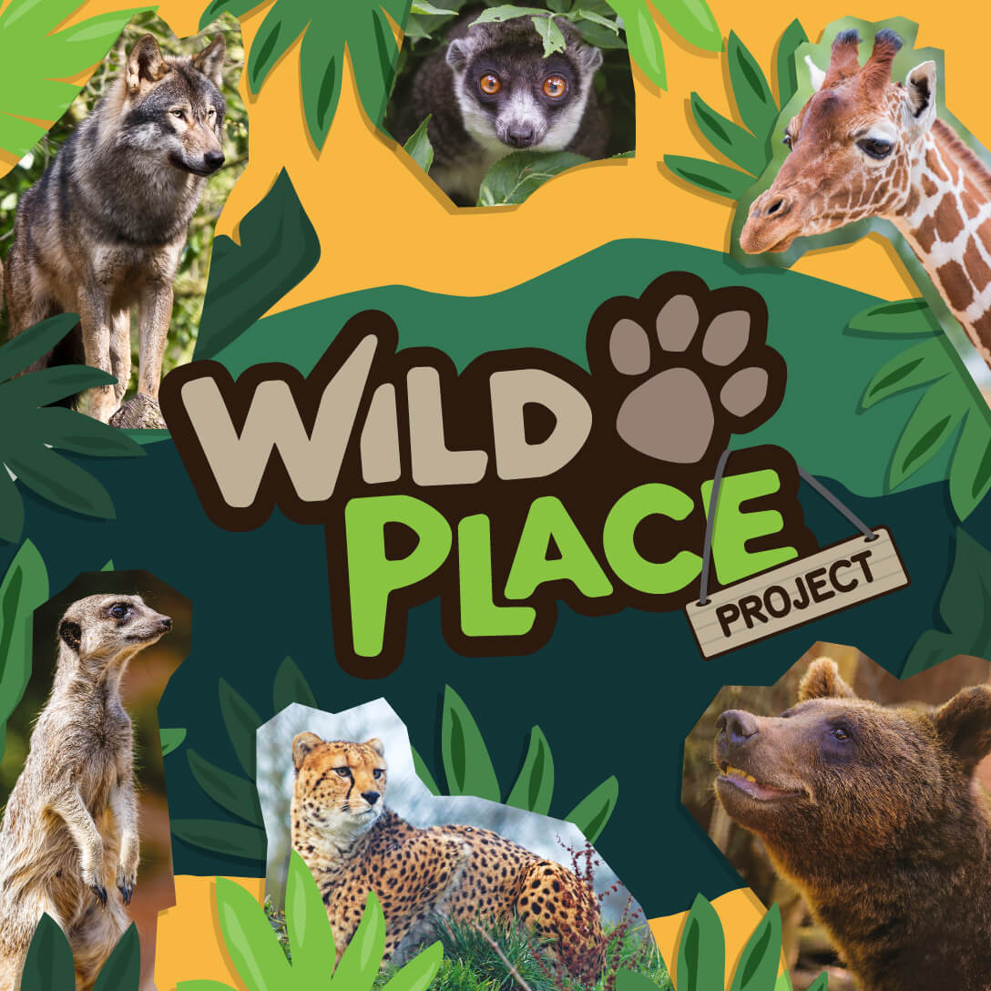 Wild Place Project website link