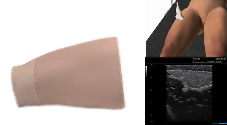 Adductor/Saphenous Ultrasound Nerve Block Simulator