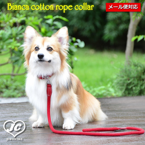 【ダヴィンチ】Bianca cotton rope collar【size:4】
