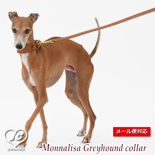 【ダヴィンチ】Monnalisa Greyhound collar【size:3/3.5】