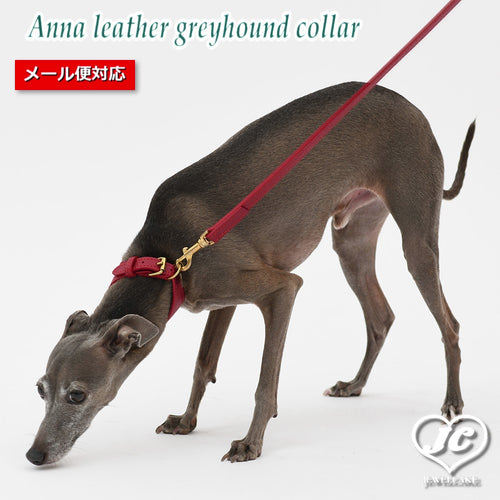【ダヴィンチ】Anna leather greyhound collar【size:3/3.5】