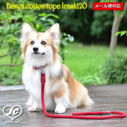 【ダヴィンチ】Bianca cotton rope leash120【size:L】