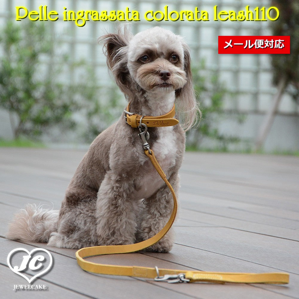 【ダヴィンチ】Pelle ingrassata colorata leash110【size:S/M】