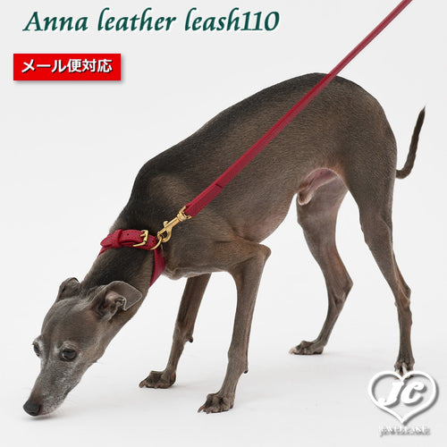 【ダヴィンチ】Anna leather leash110【size:L】