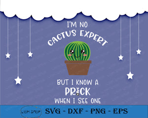 I'm No Cactus Expert But I Know A Prick When I See One SVG PNG Clipart Digital Download - SVGPrints