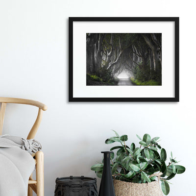 Dark Hedges by Nicola Molteni Framed Print - UH