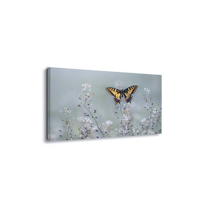 Swallowtail Beauty by Petar Sabol Canvas Print - USTAD HOME