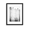 Freed by Jürgen Hartlieb Framed Print - UH