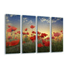 Poppies by Albena Markova Glass Print - UH