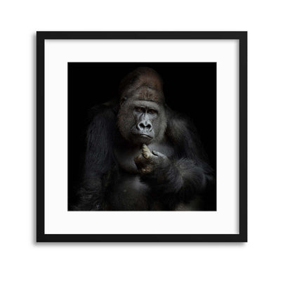 IMHO by Antje Wenner-Braun Framed Print - UH