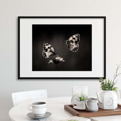Medioluto by Jimmy Hoffman Framed Print - UH