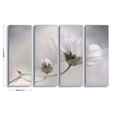 Simply Cosmos by Mandy Disher Glass Print - UH