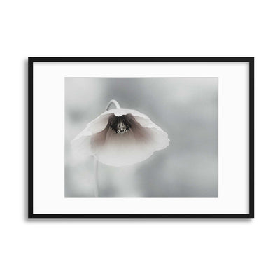 Ephemeral Beauty by Piet Flour Framed Print - UH