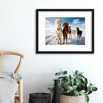Icelandic Hair Style by Mike Leske Framed Print - UH