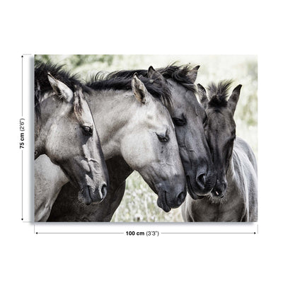 Four Konik Horses by Jaap Canvas Print - UH