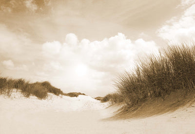 Sandy Days in Sepia Wallpaper - UH