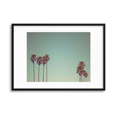 Palm Drive Framed Print - USTAD HOME