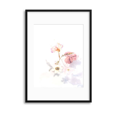Delicate Shadows Collection No.6 Framed Print - UH